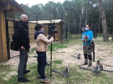 Sud-Ouest parle du Zoo de Labenne