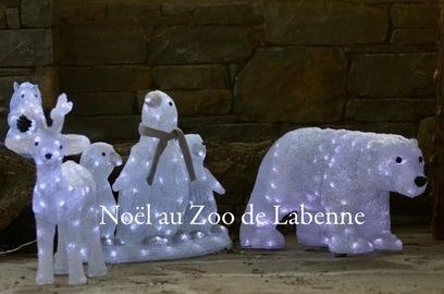 Animations à Noël
